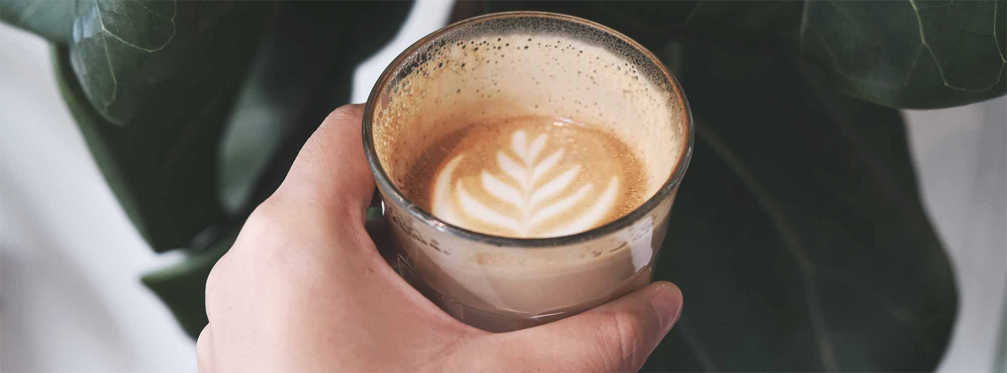 The Rise Of The Coffee Snob